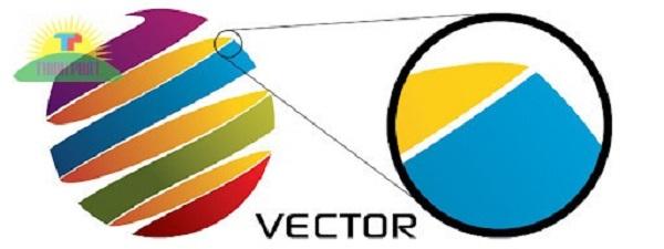 Hình Vector là gì?