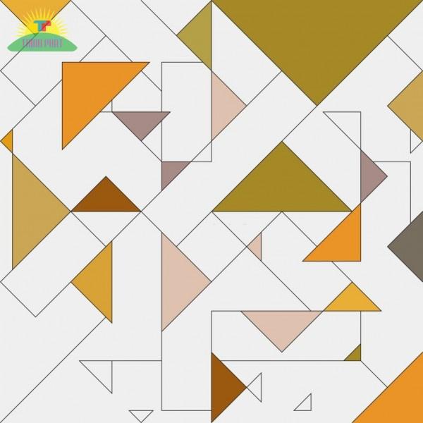 Ví dụ minh họa hình Vector