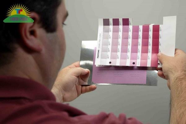Việc so sánh màu sắc thực tế trên bản in thử giúp nhìn nhận đúng sắc độ màu
