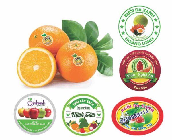 In tem nhãn giá rẻ cho trái cây – một số lưu ý để có chiếc tem ưng ý